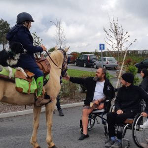 tour-de-france-des-centres-de-reeducation-a-cheval